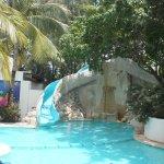 Foto de Grand Oasis Palm