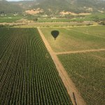 Photo of Balloons Above the Valley