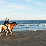 Seabrook Island Resort Image