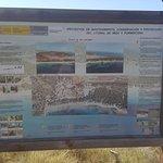 Photo of Playa de Ses Salines