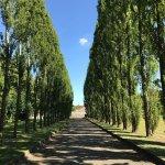 Photo of Treptower Park