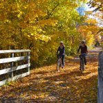 Leelanau Wine Trail Tour in the Fall
