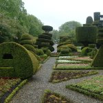 Some of the Topiary