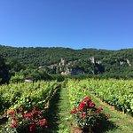 Foto de Hotel Spa Le Saint Cirq