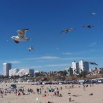 Photo of Santa Monica Beach