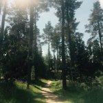 Foto de Center Parcs Whinfell Forest