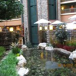 beautiful fish pond & landscaping in the lobby area .