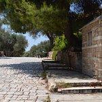 the archaeological park