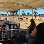 Protur Sa Coma Playa Hotel & Spa Foto