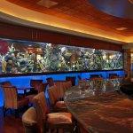 The 3,300-gallon saltwater aquarium in the Black&Blue Lounge