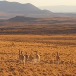 Foto de Andes Challenge