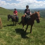 Pentre Riding Stables