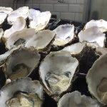 Sydney Fish Market Foto