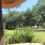 Foto de Imbabala Zambezi Safari Lodge