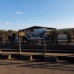 The bridge over Zambezi