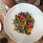 Mushroom salad (on bed of roses ?)