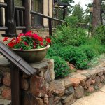 Landscaping by the front door steps