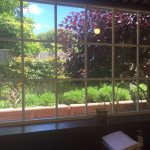 View from inside the cafe to the garden