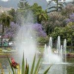 The lovely pond in Santa Catarina Park