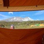 Photo de Mont Kilimandjaro