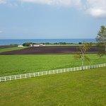 Outdoor landscape views