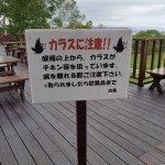 """""""Crows"""" warning"""