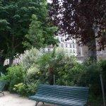 Rue Saint Dominique Photo