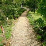 Le parc archéologique et botanique, lieu historique des fouilles