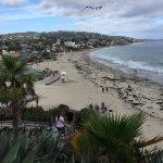 Photo of Newport Beach