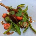 Pigeon rôti servi rosé, mousserons au vinaigre, salade mange tout et mara des bois