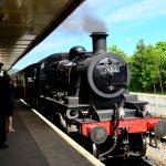 Steam Train Lunch!