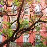 Photo of Lisbon Dreams Guest House