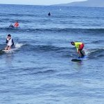 My children had the best time and learned to love surfing in a single lesson.   They also learne