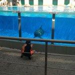 Photo of Lisbon Zoo