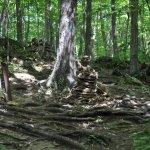 Niquette Bay State Park