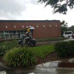 Mellow Rider