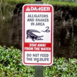 sign by pond