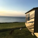 Foto de The Cove Oceanfront Campground