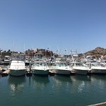Photo of Marina Cabo San Lucas