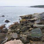 Foto de Otter Cliff