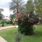 Photo de Rei del Mediterrani Palace