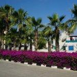 Photo of Tsokkos Gardens Apartments