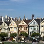 Photo of Painted Ladies