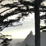 View of Yaquina Head from the Property