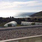 Green houses for fresh vegetables with Atlantic in background. Taken from room.