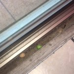 Food left over in sliding glass door track