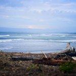 Foto de Lanai at the Cove