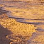 Photo de Sanibel Island Beach Resort