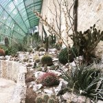 Photo de Jardin des plantes