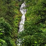 Munson Creek Falls Photo